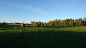 Frisbee Golf in Siltamäki
